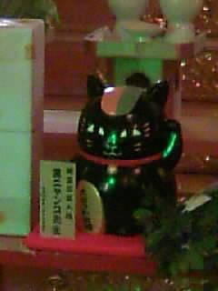 黒ニャンコ先生の招き猫。正月早々、黒って(笑)!